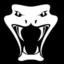 snaaake avatar